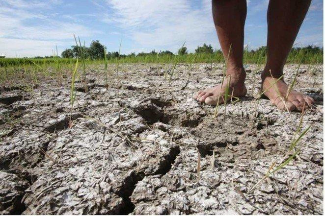 Drought & El Niño in Ethiopia