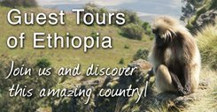 Come visit Ethiopia with us!