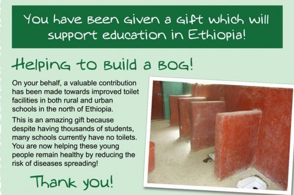 Help Build A Bog