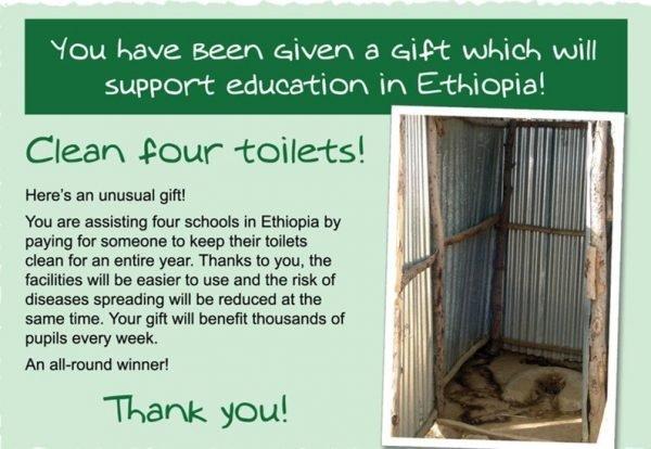 Clean A Toilet (4 Schools)
