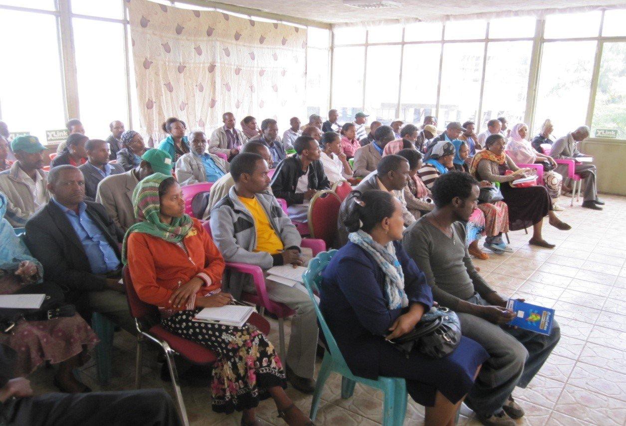 Link Conference in Gondar